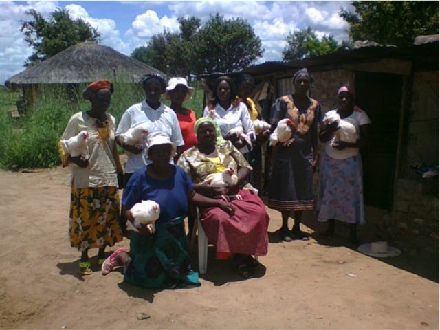 Image - Village Savings and Lendings Protects Group Against Future Shocks